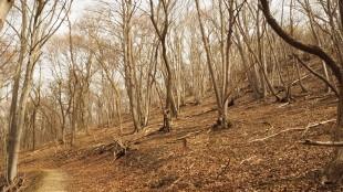 Naturschutzgebiet Tote täler