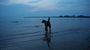 Sonnenuntergang am der Ostsee