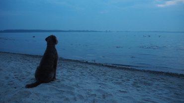 Sonnenuntergang an der Ostse