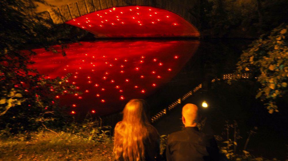 Lichtparcour Braunschweig bei Nacht