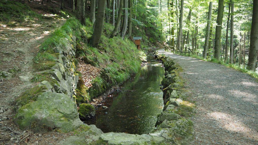 Graben bei Bad Harzburg