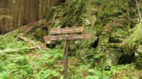 Irrwege im Harz