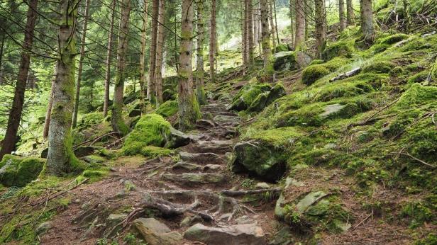 Treppen am Meraner Höhenweg