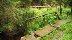 verwitterte Wege im Harz