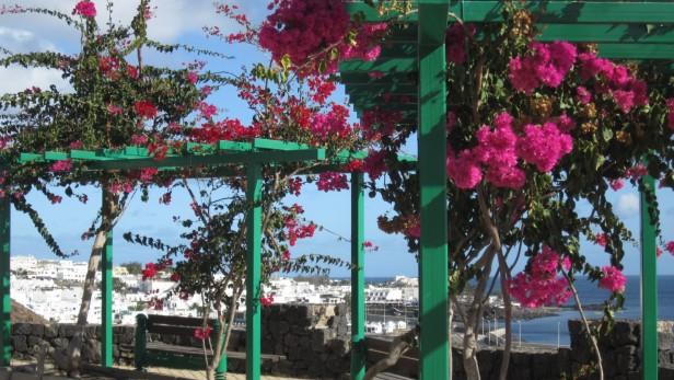 Lanzarote - Puerto del Carmen