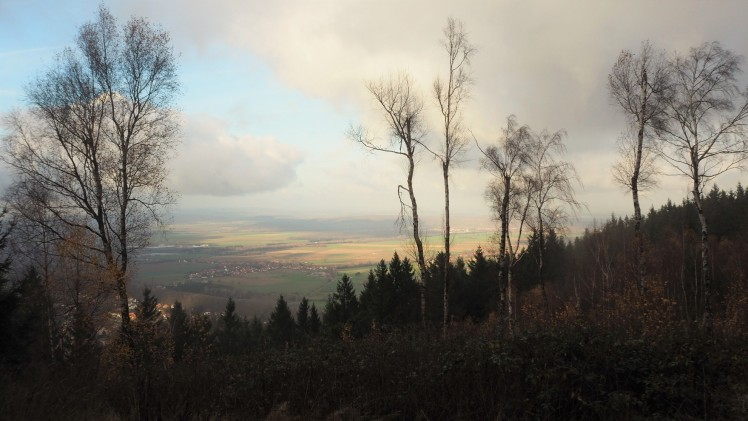 Blick in das Harzvorland