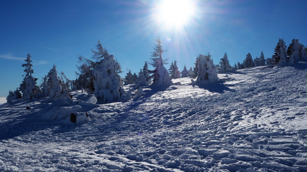 brocken-im-winter-22
