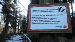 harz-borkenkaefer23