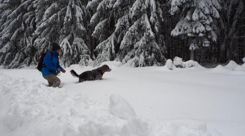 winterwandern-harz-1