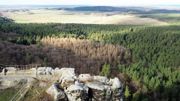 Blick von der Burgruine Regenstein