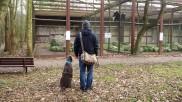 Vogelpark Niendorf 7