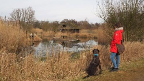 Vogelpark Niendorf 9