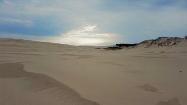 Polnische Sahara (5)
