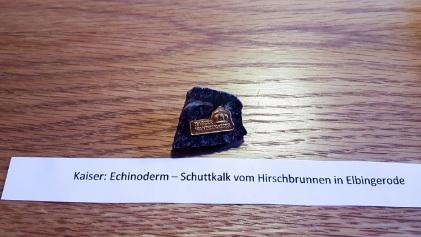 Harzer Wandernadel Blankenburg (1)