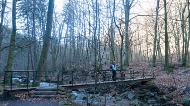 Wanderetipp Harz Ilsetal (2)