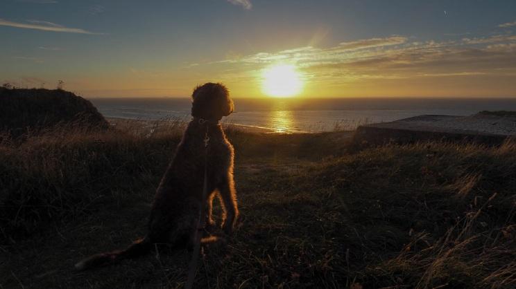 Heute noch den Sonnenuntergang in Frankreich genießen. Morgen geht es über den Kanal nach England.
