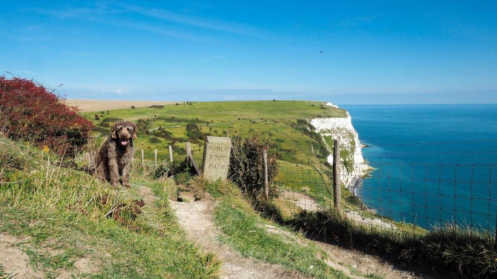 Unsere erste Begegnung mit dem in England so typischen Public Foot Path - hier an auf den White Cliffs von Dover.