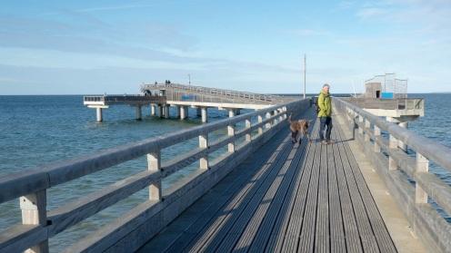 Heiligenhafen mit Hund (11)