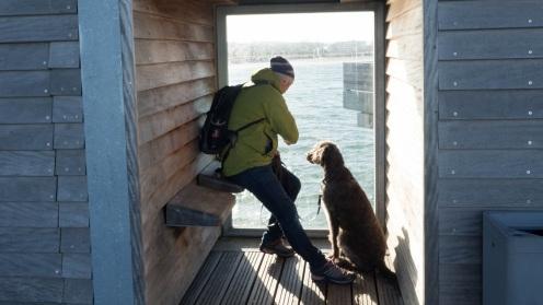 Heiligenhafen mit Hund (15)