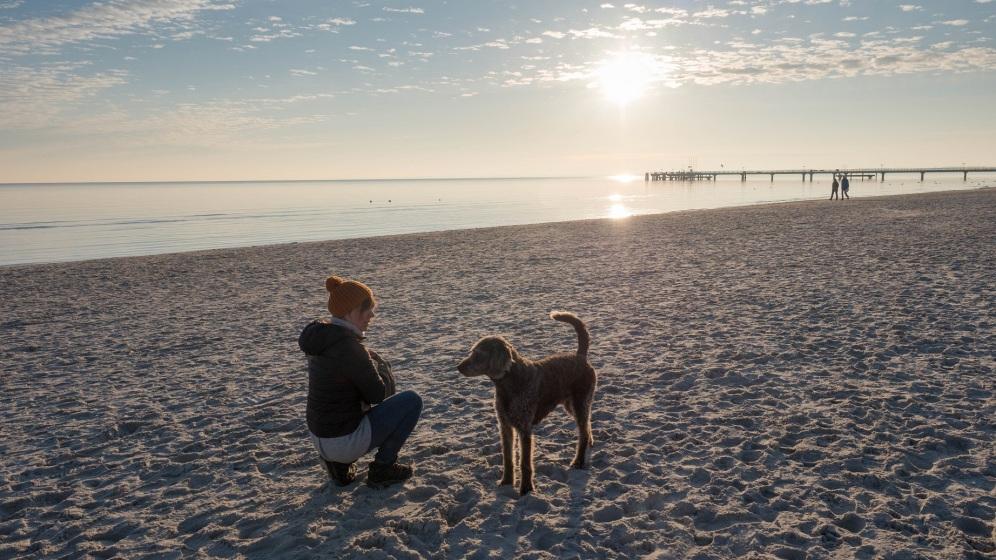 Scharbeutz mit Hund (5)