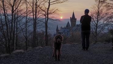 Sonnenuntergang Schloss Wernigerode (13)