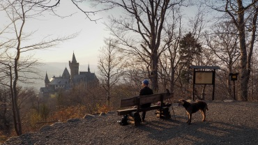 Blick vom Agnesberg auf Schloss Wernigerode
