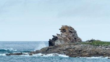 Rosa Granitküste Île Grande (6)