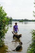 Meissendorfer Teiche mit Hund (14)