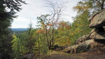 Wandern am Hohnekamm Harz (5)