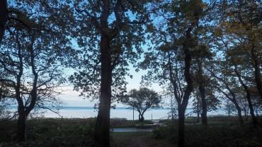 Hohwachter Bucht im Winter (4)