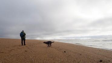 Dünen von Erdeven Bretagne (3)