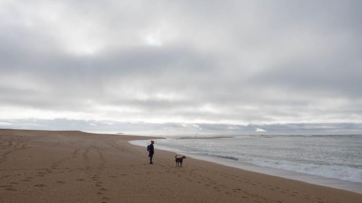 Strand von Erdeven mit Hund