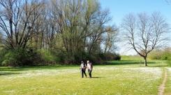 Frühling (7)