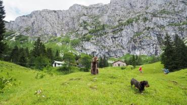 Tutzinger Hütte mit Hund (5)