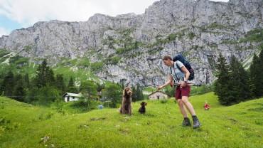 Tutzinger Hütte mit Hund (6)