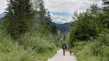 Abstieg Karwendel bei Mittenwald (3)