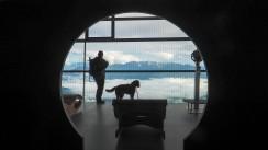 Karwendelbahn mit Hund